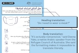"A Government ad in Arabic, with a translation labelling it ""nonsensical"" inset."