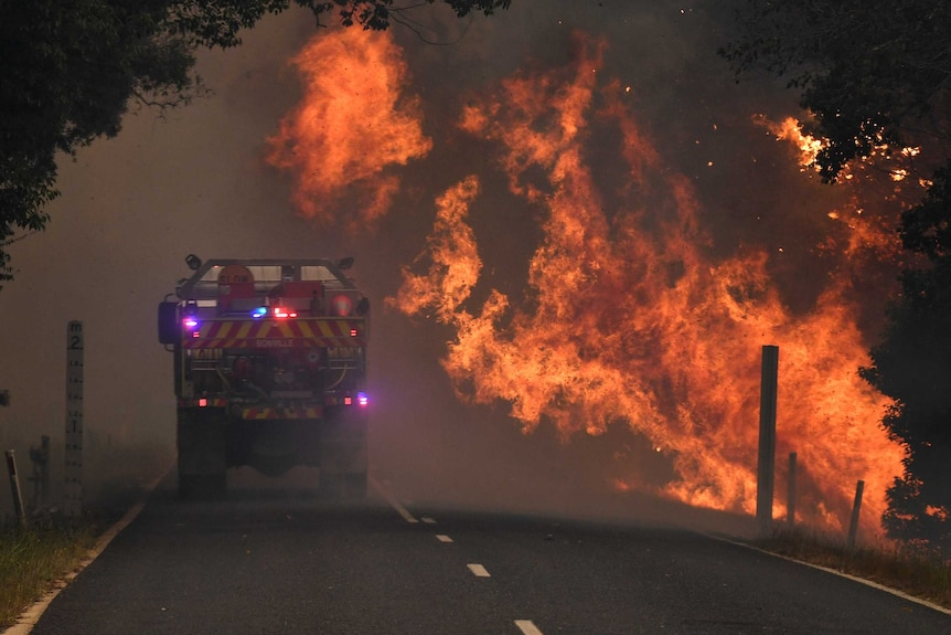 A fire truck travels on a road in bushland, with flames blowing over the road towards the truck.