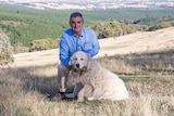 A man with a maremma in a local land services shirt in front of a landscape