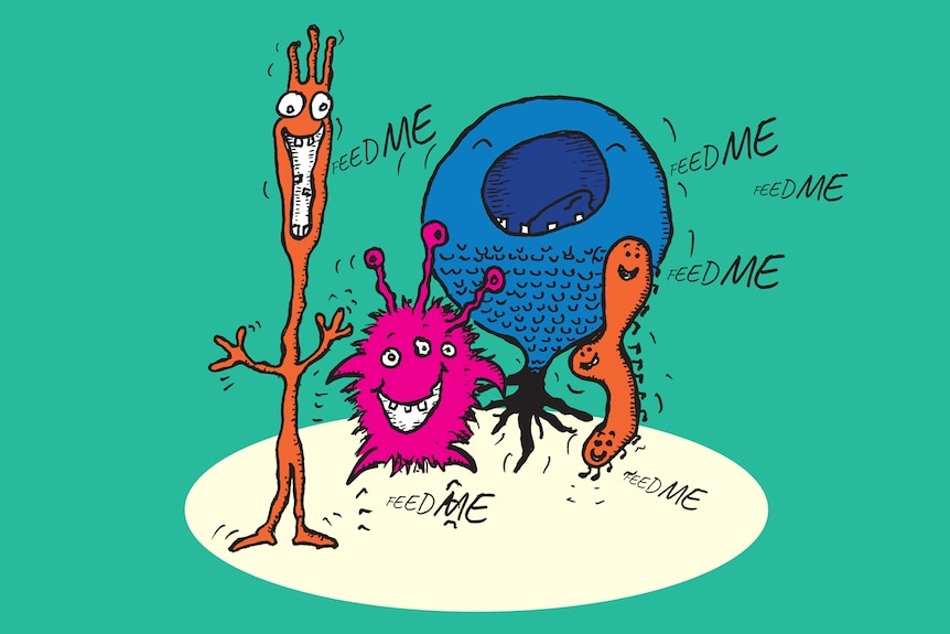 An illustration of four cartoon creatures of various shapes saying 'Feed me'