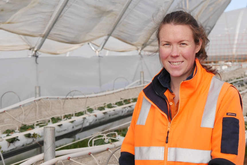 A woman in an orange high visibility vest stands in a poly tunnel