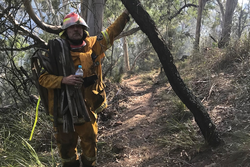 Dirty and exhausted firefighter leaning on a burnt tree