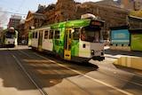 A tram in the Melbourne CBD