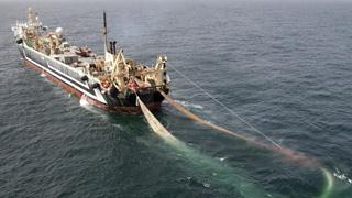 Margiris trawler