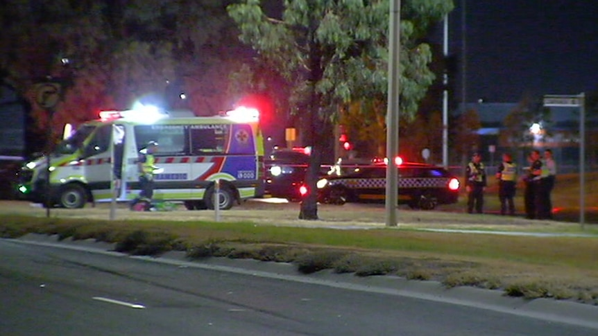 An ambulance and police cars parked on a median strip with their lights on.