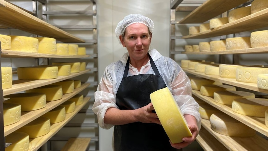 Red Cow Organics general manager Andy Jackman in the cool store with a large wheel of cheese