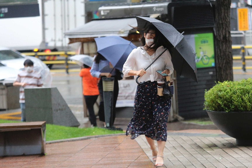 A woman holds an umbrella against the strong wind and rain caused by Typhoon Bavi.