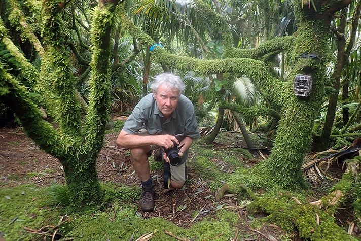 A man with grey hair holds a camera and kneels on the ground among moss-covered trees