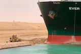 Ever Green, sits with its bow stuck into the wall in the Suez canal.