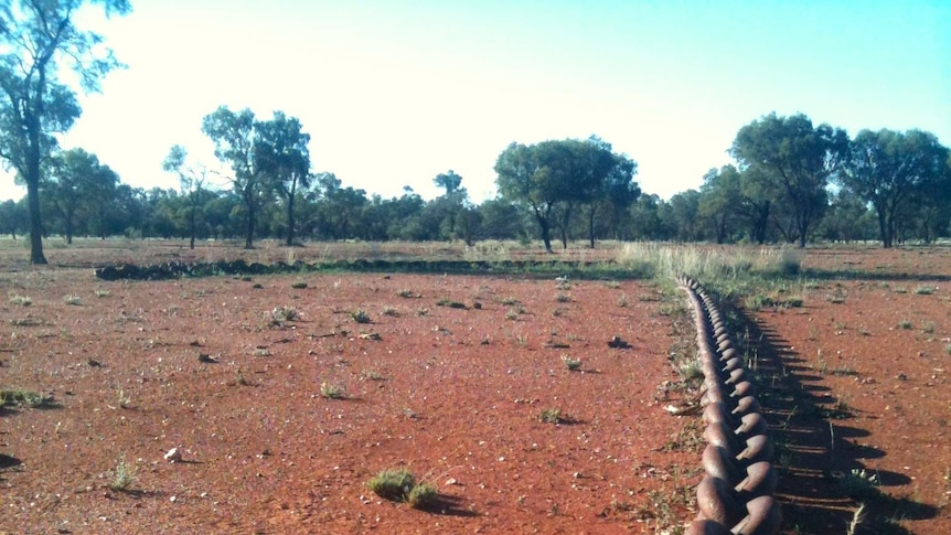 Giant land clearing chain stretches over red soil as farmers in western New South Wales