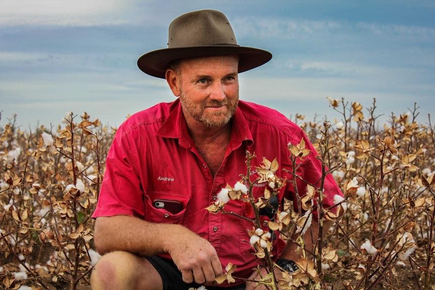 Portrait of cotton farmer Andrew Watson kneeling in a cotton field