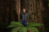 Man in front of big tree.
