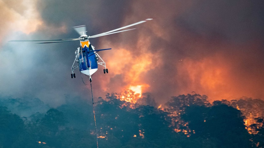 A blue and white helicopter flied above burning bushland.