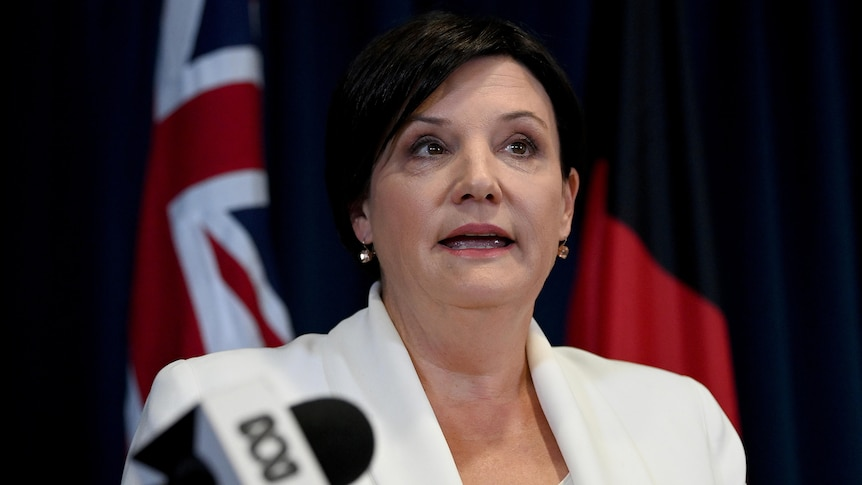 Jodi McKay steps down as NSW Opposition Leader after Labor crisis meeting – ABC News