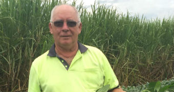 Sugar cane farmer Robert Quirk stands in cane field