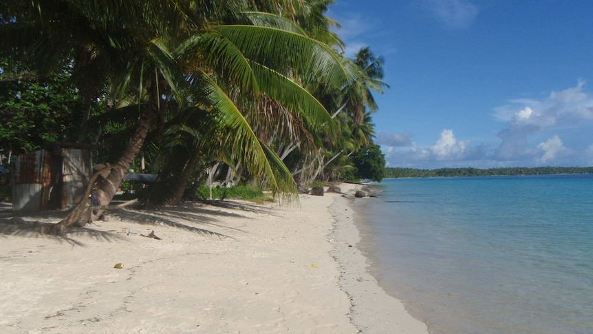 Shoreline on the island of Jeh, part of the Pacific nation of Marshall Islands. There is blue water and green tropical trees.