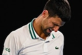 Nojak Djokovic looks towards the ground with a pained expression on his face