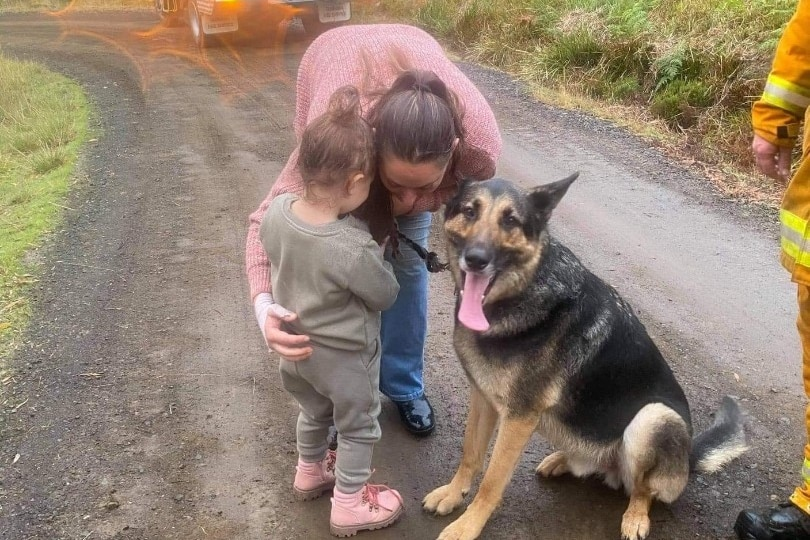 a woman hugs her toddler and dog