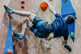 A man hangs by one arm from a colourful indoor rock climbing wall.