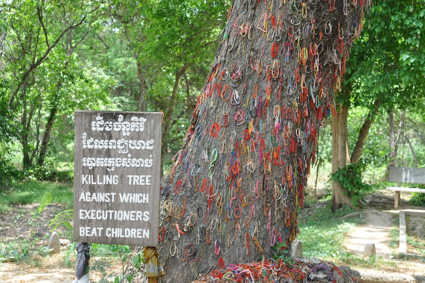 A tree with lots of colourful bracelets hanging off the bark with a sign in Khmer reading: Killing tree
