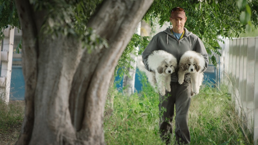A man carrying two puppies in his arms.