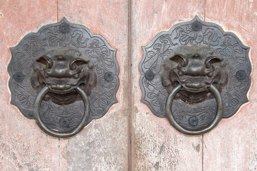 Two metal door knobs cast into the shape of the heads of Chinese Fu dogs.