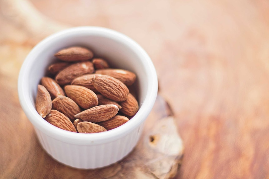 A small pile of almonds in a ceramic bowl on a wooden bench