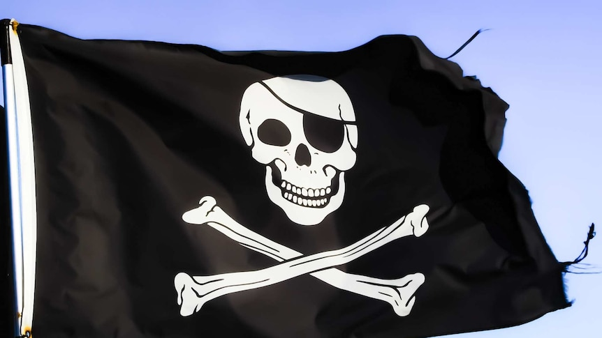 Security boss wants to tackle cybercrime like the British Navy fought pirates in the Caribbean