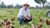 Man squats in green paddock surrounded by brown hens