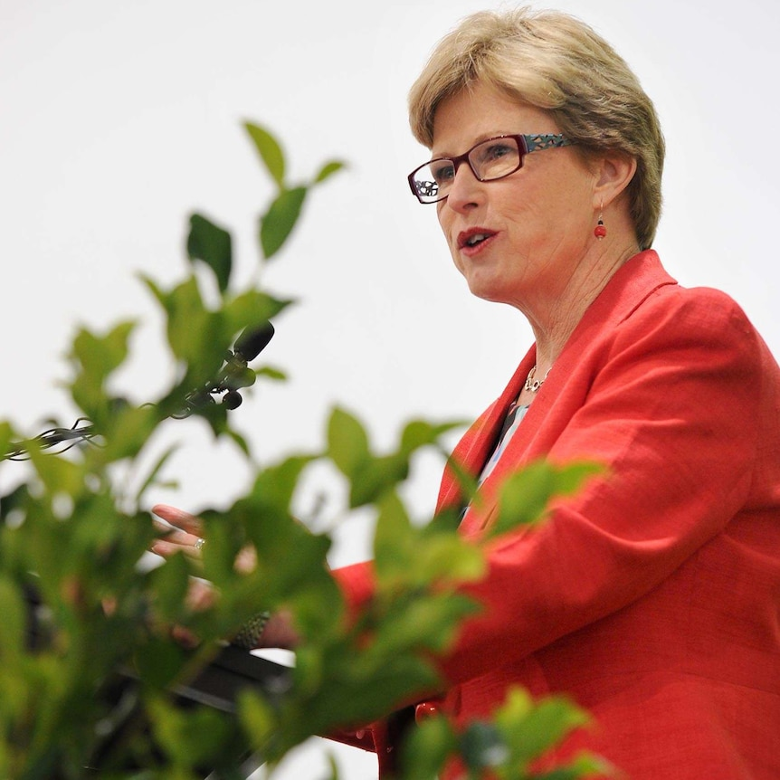 Senator Milne resigned as Australian Greens Leader last month and will not contest the next election.