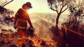 A firefighter conducts a fuel-reduction burn at sunrise or sunset in bushland.