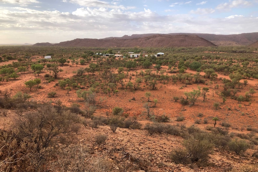 A photo of a cattle station in the NT