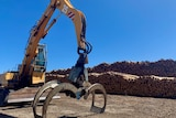 A machine infront of piles of timber at Bunbury port.