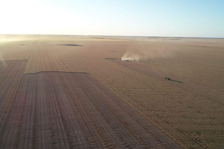 A wheat paddock from the air with headers and chaser bin