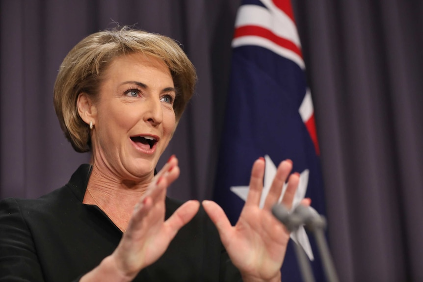 Michaelia Cash's mouth is open wide as she addresses the media. Her hands are outstretched in front, an Australian flag behind.