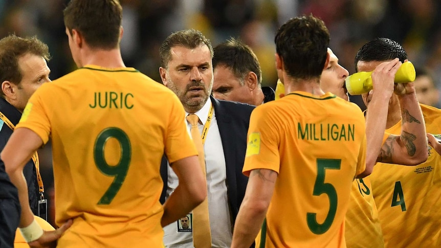 Socceroos coach Ange Postecoglou with players in World Cup qualifier against Syria