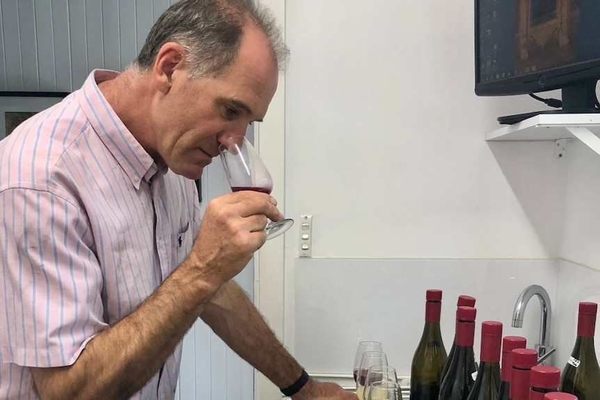man smells wine to check flavour