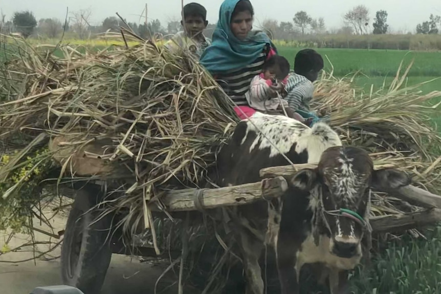 A mother and three children sit on top of a cart of straw.