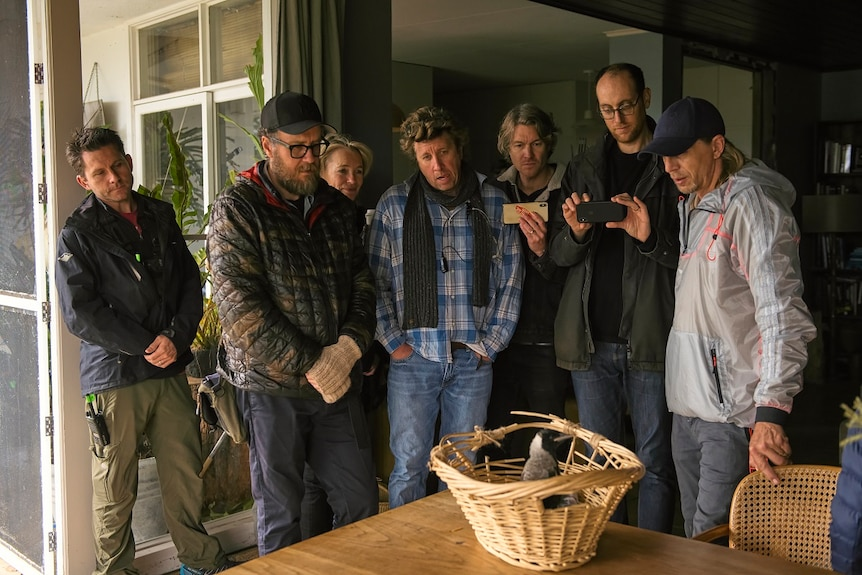 Six men and one woman all wearing thick jackets and caps stand around an oak table with a woven basket looking at magpie inside