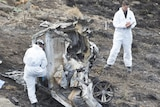 Police look over the burnt out remains of the vehicle, surrounded by scorched earth.