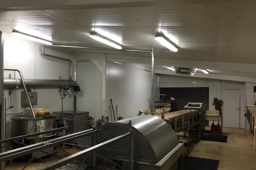 Two people and lots of machinery inside a honey processing plant.