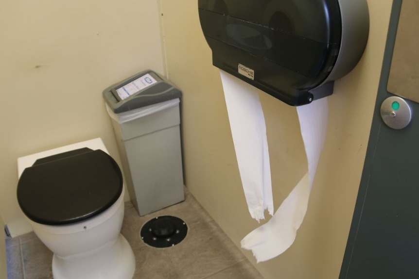 Public restrooms, with trash cans and toilet paper dispensers, with toilet paper hanging over them.