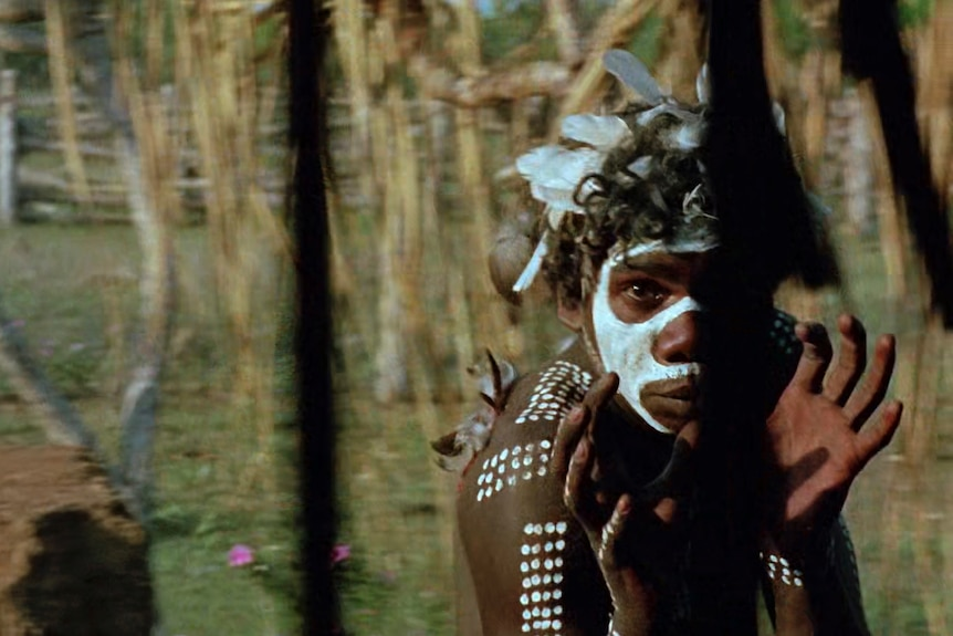 Actor David Gulpilil, an young Yolngu man in traditional paint dancing, in the 1971 film Walkabout