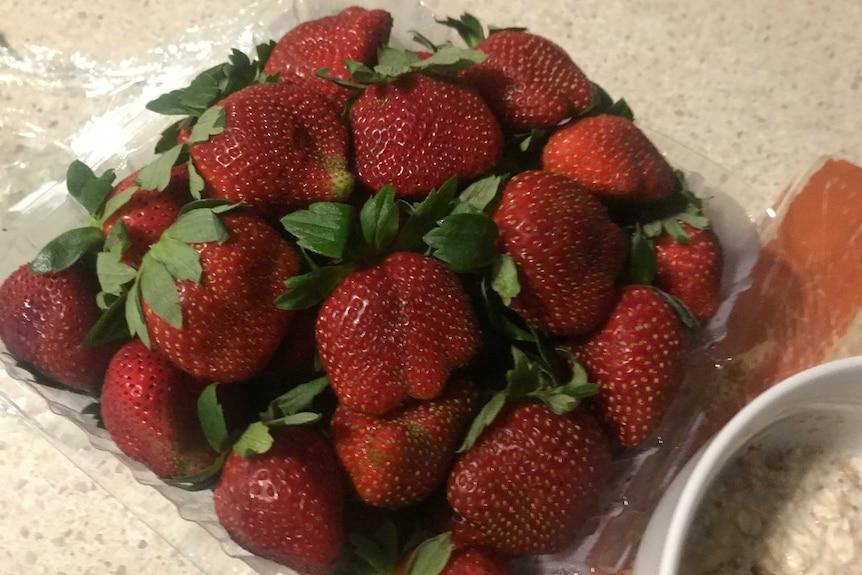 1 kg punnet of strawberries in a punnet