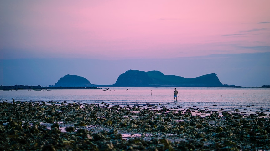 A man ankle-deep in water on a beach with the sky turning pink at sunset