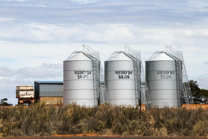 Barley silos in Western Australia's salt lake country.