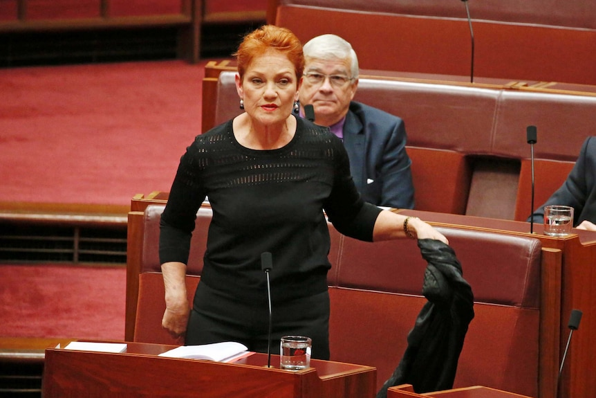 Pauline Hanson holds a burka face veil before putting it on in the Senate on August 17, 2017.