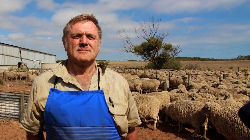 Shearing contractor Brian Hipper