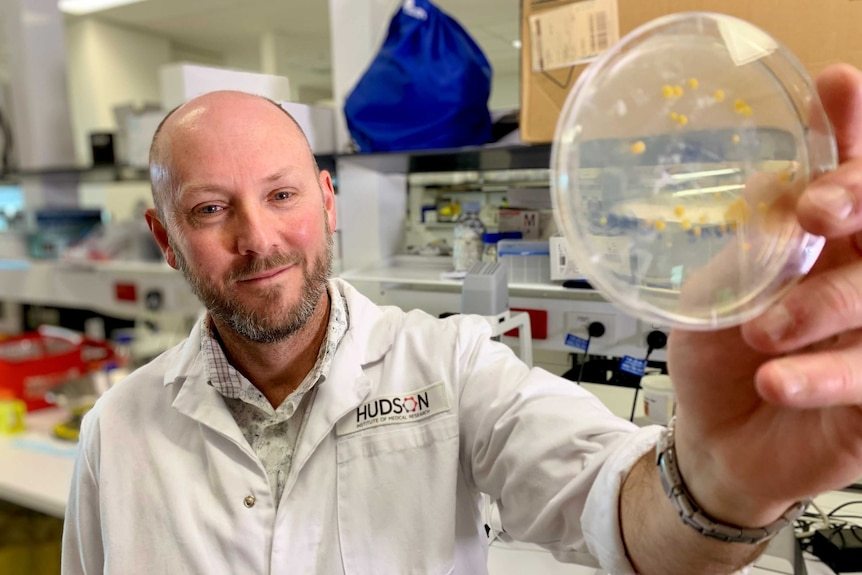 A man in a white lab coat holds a Petri dish with yellow samples inside.