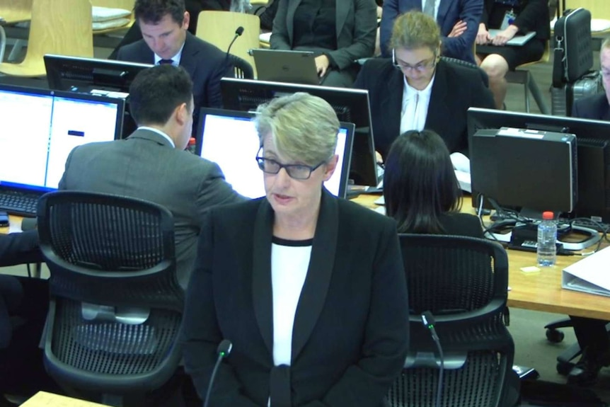 Counsel assisting the royal commission Gail Furness making addressing the hearing.